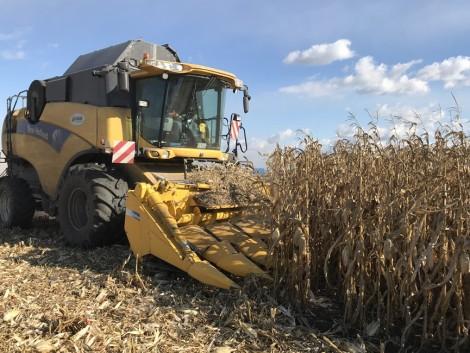 Itt a 2017-es kukoricaaratási rekord!