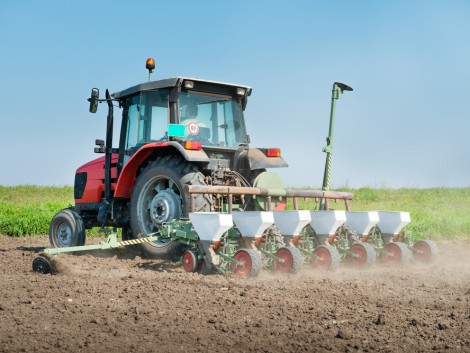 Hogyan védekezzünk a talajlakó-kártevők ellen?