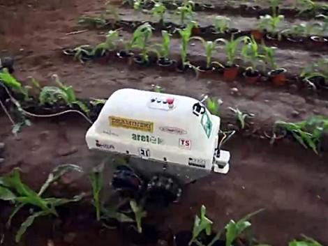 Robotpermetező, ami felismeri a gyomokat és a beteg növényeket