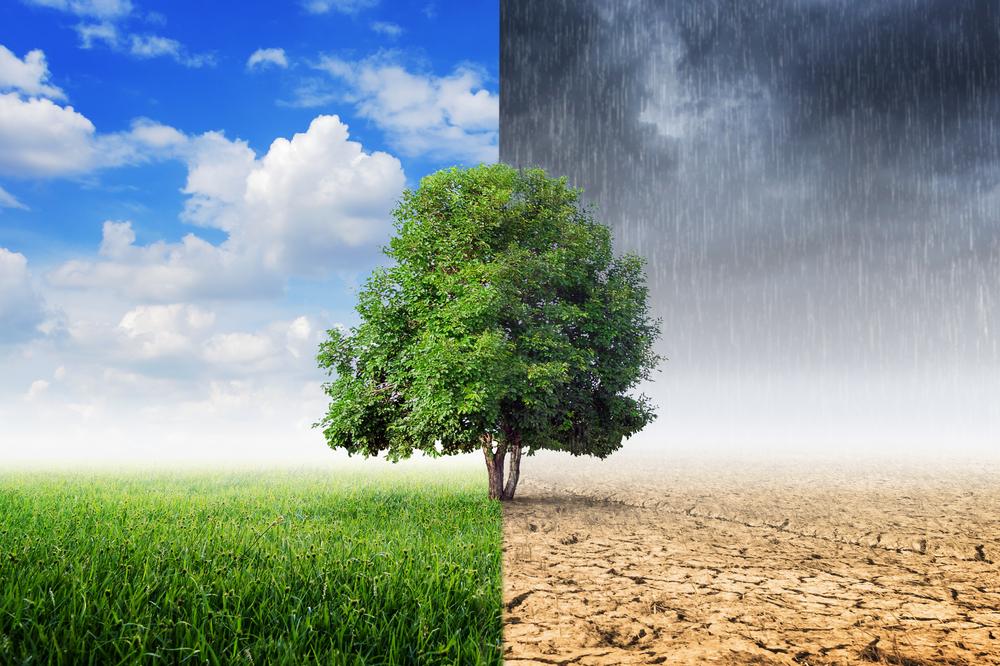 klímavédelem