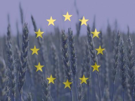 Rugalmasabb és fenntarthatóbb agrárpolitika – konzultációkon formálódik az új KAP