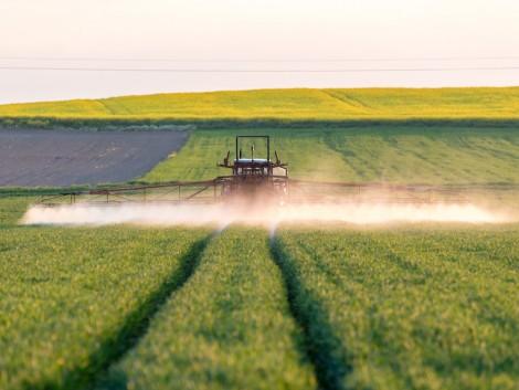 A DowDuPont™ mezőgazdasági divíziója különálló vállalattá válik