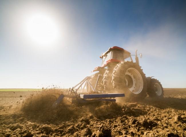 Van kérdése a talajbaktérium-oltásról? Mi válaszolunk.