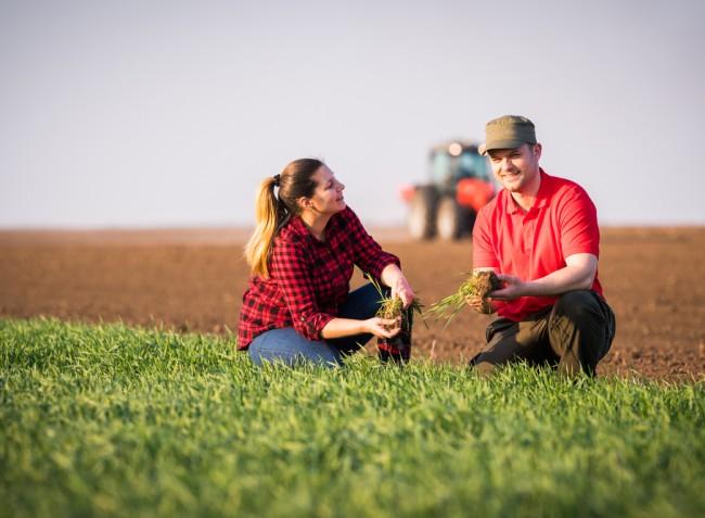 Még lesz keret a fiatal gazdák számára egy újabb pályázati körre