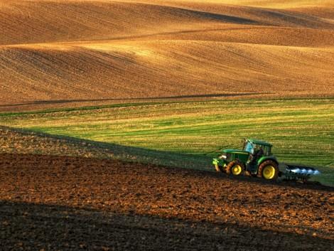 Az agráriumra figyelnek a bankok