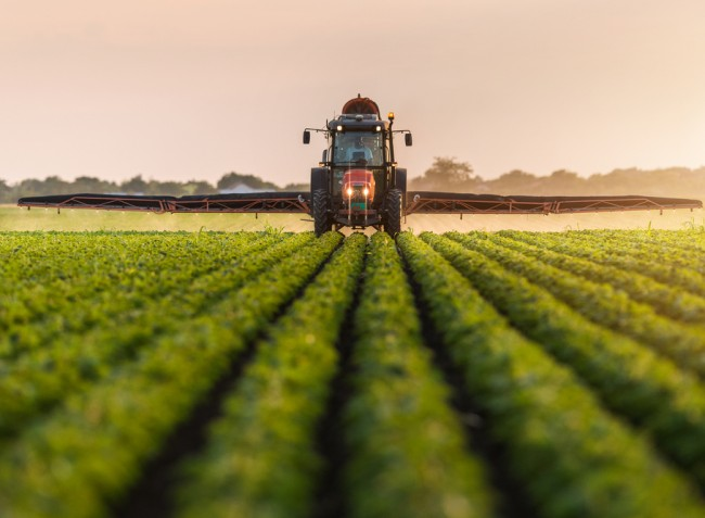 Lombtrágyázás a zöldségtermesztésben
