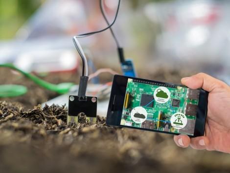 Az IoT új utakat nyit meg a mezőgazdaságban