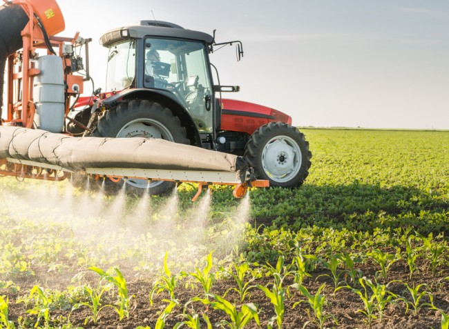 Folyamatosan szigorodnak a növényvédőszer-felhasználás szabályai