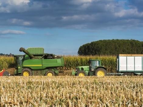 NAK: Szükség van a gabonákra vonatkozó fordított áfafizetésre