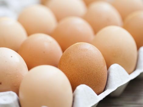 Most éppen a lengyel tojásokkal van baj