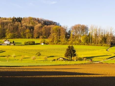 Módosult az agrár-erdészeti rendszerek pályázat felhívása