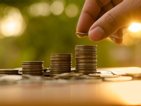 Megkezdődött a tenyészkosok, tenyészbakok tenyésztésbe állítására irányuló támogatások kifizetése
