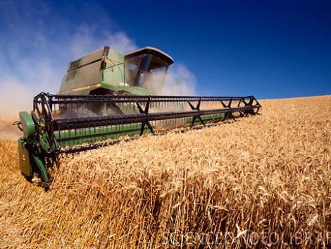 Milyen a jó gabona-nedvességmérő?
