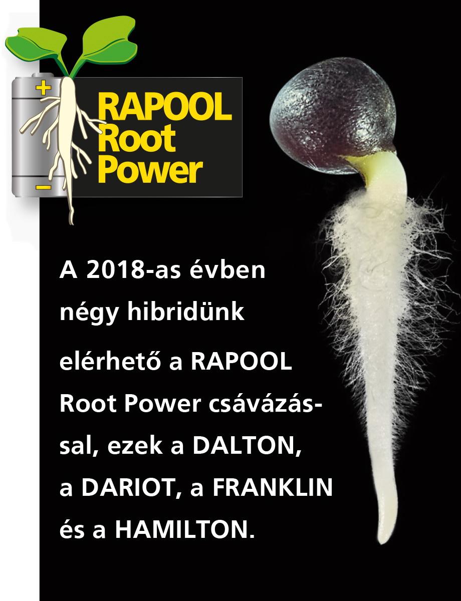 Rapool