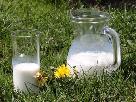 Több száz tejautomata menekült meg