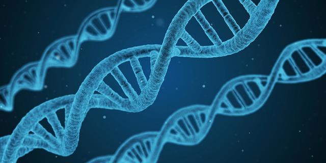génszerkesztés
