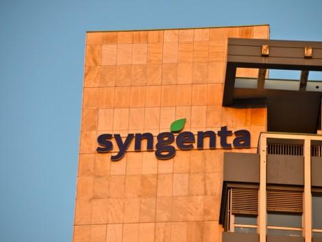 Erősíti magyarországi jelenlétét a Syngenta