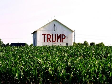 Ezt várhatják a gazdák a Trump kormánytól