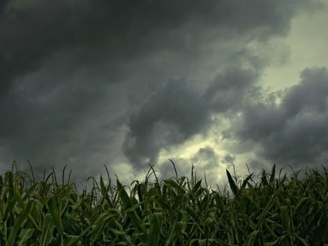 Nyugaton eső, keleten szárazság