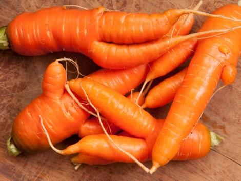 Hatalmas pazarlás: a megtermelt zöldség és gyümölcs harmada nem jut el a boltokba