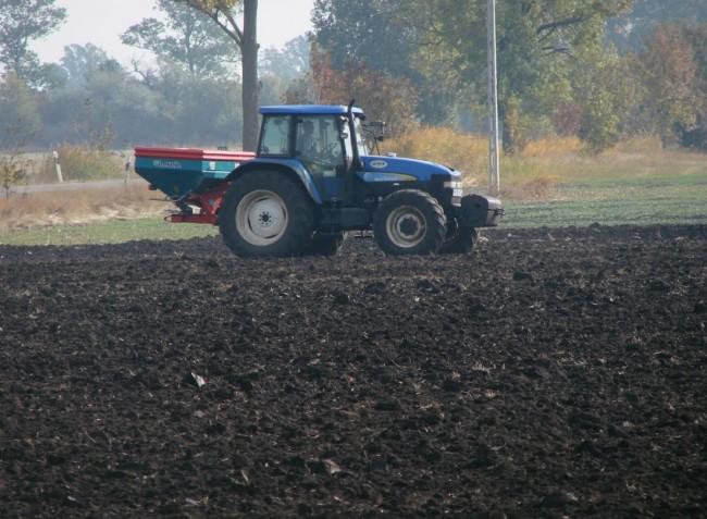 Tápanyagok megosztása és a tápanyagpótlás időzítése a szabadföldi zöldségtermesztésben