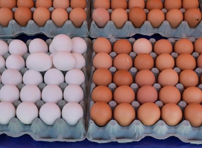 Idén 20 százalékkal nőtt a tojástermelés
