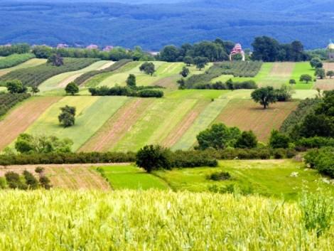 Magyarország kiemelkedő természeti értékekkel – és mezőgazdasági kultúrával rendelkezik