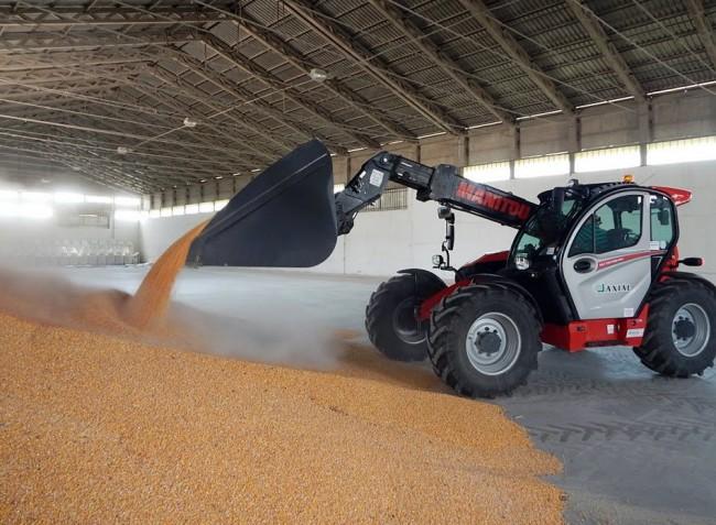 A búza és a kukorica ára is kedvezőbb a tavalyinál