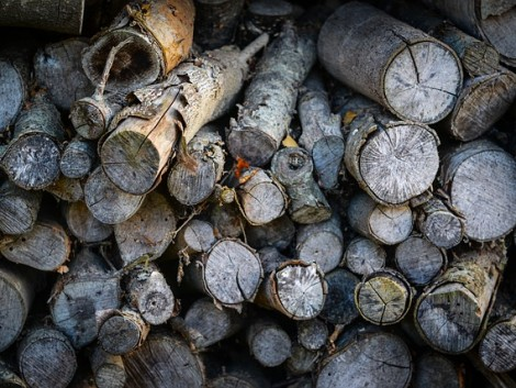 Nem emelik idén a szociális tűzifa árát