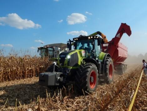 Agrárminisztérium: Ígéretes kilátásai vannak a magyar agráriumnak