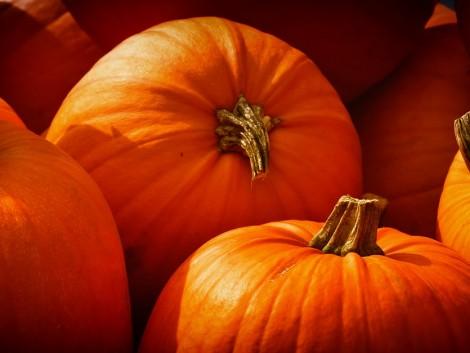Ez az ország termesztette a legtöbb tököt Halloweenre