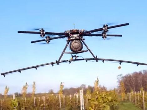 Egy lett startup speciális drónt fejlesztett ki szőlőültetvényekre