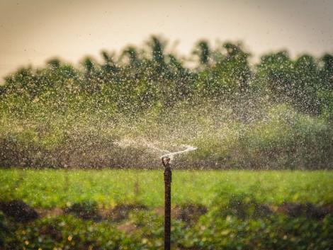 Módosult a mezőgazdasági vízgazdálkodási pályázat!