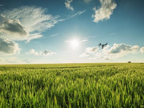 Drónokkal kalkulálható a várható termésmennyiség