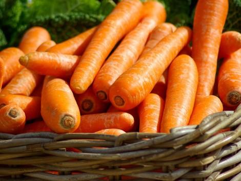 Nyolc mázsa jelöletlen zöldséget és gyümölcsöt talált a NAV