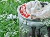 Egy lengyel vállalat lebomló csomagolóanyagokat gyárt