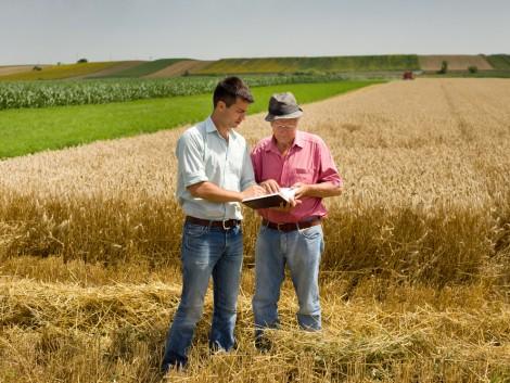 EP: Igazságosabb bánásmódot kell biztosítani a gazdálkodóknak