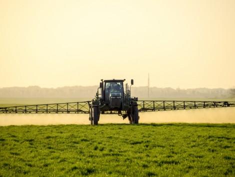 A peszticidek használatának csökkentését sürgeti az Európai Parlament