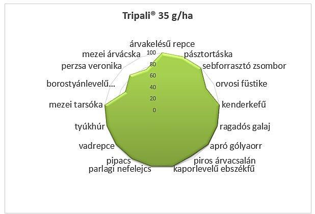 2.ábra