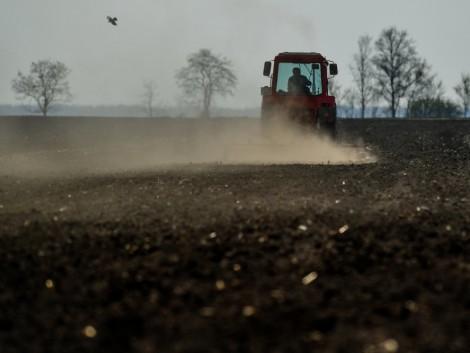 Az agrárkár-enyhítés összegének csak felét kapja az, akinek nincs biztosítása