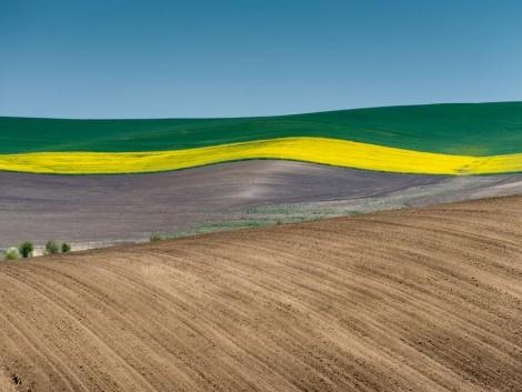 Tudja, hogyan függ össze a földhasználat változása és a talaj szénmegkötése?