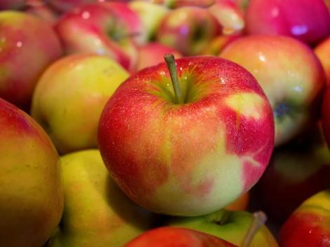 Építőipari cég hoz létre gyümölcsfeldolgozó üzemet