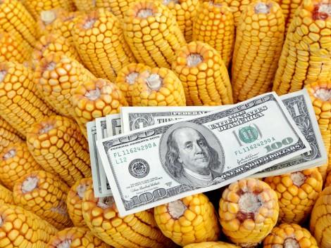 Áprilisi helyzetkép: hogyan befolyásolta az időjárás a mezőgazdasági termelést és a világpiaci árakat?