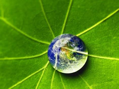 Mivel tudod gazdaként óvni a Föld kincseit? Megújuló energiával!