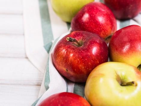 Ezekre az árakra számíthatnak idén az almatermelők