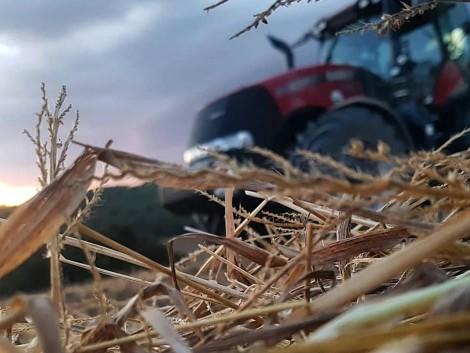 Nagyot esik a hőmérséklet és jönnek a talajmenti fagyok!