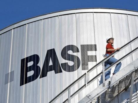 Vezetőváltás a BASF Hungária Kft. Agrodivíziójában