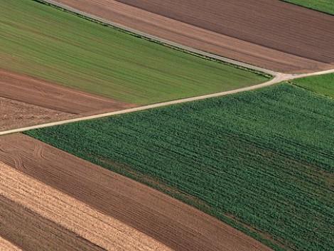 Az agrárium legégetőbb problémája: az öröklés