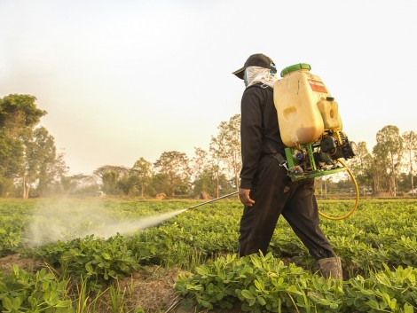 Október 31-ig kell bejelenteni a 2018-as növényvédőszer-forgalmi adatokat