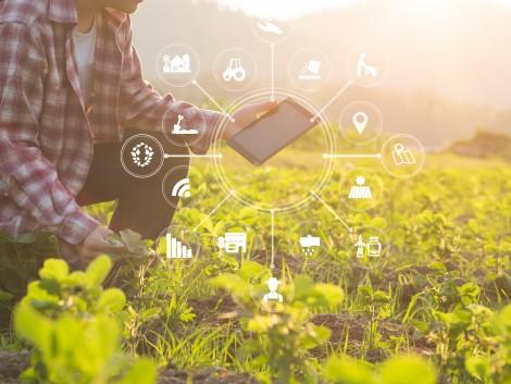 Az okos gazdáké a jövő